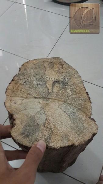 Agarwood Material 4