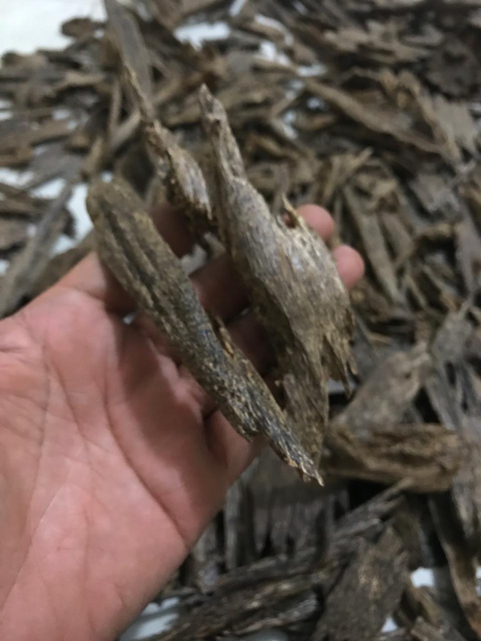 Agarwood Chip 29